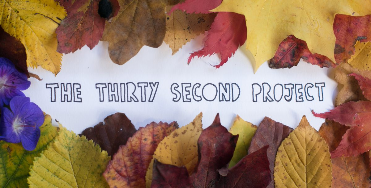 The Thirty Second Project